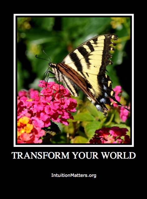 IM Transform Your World Butterfly